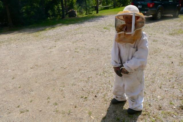 Beekeeping August - 1