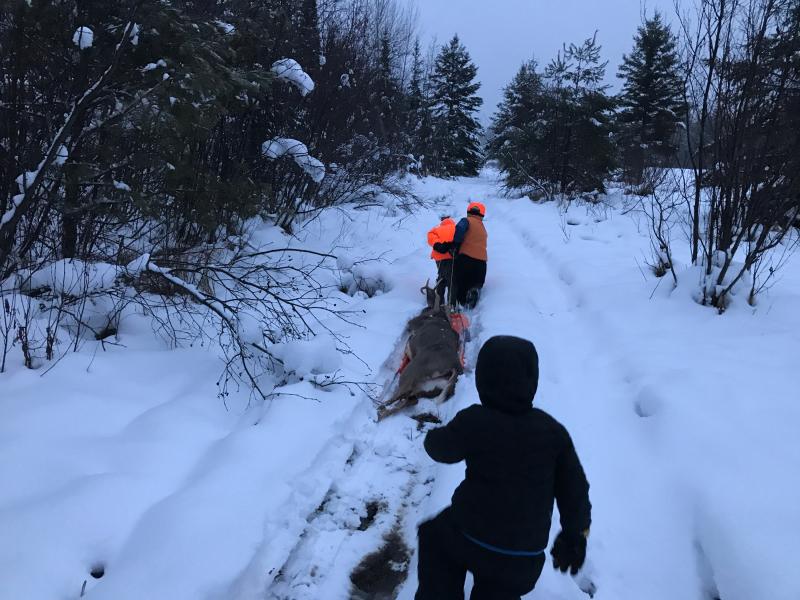 Deer Hunting 4
