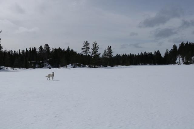 Lake Ski - BWCA - 7
