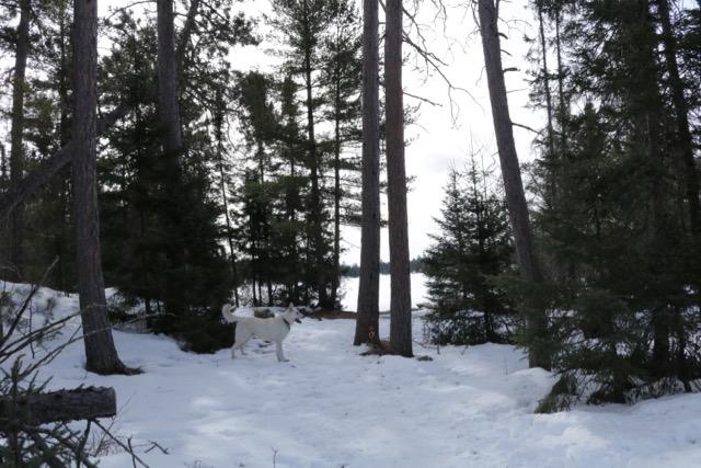 Lake Ski - BWCA - 9