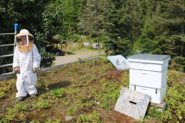 Beekeeping August - 5