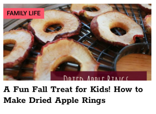 Megan Devine - Dried Apple Rings