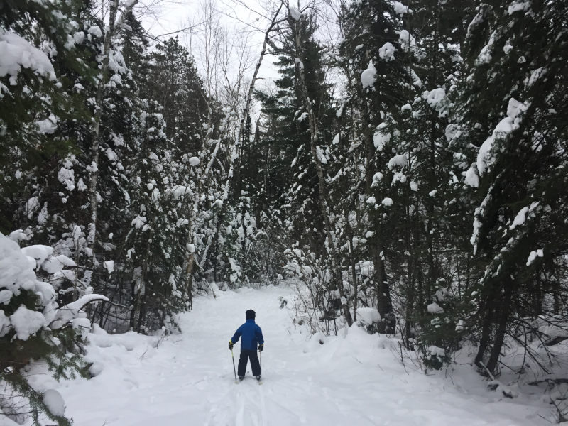 First ski 3