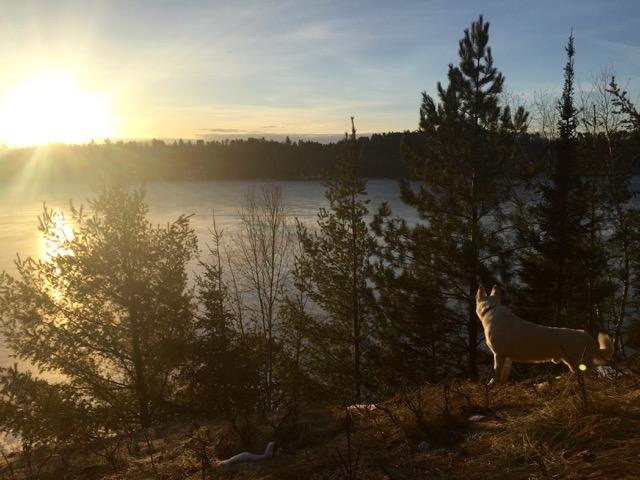 Morning Hike - 17
