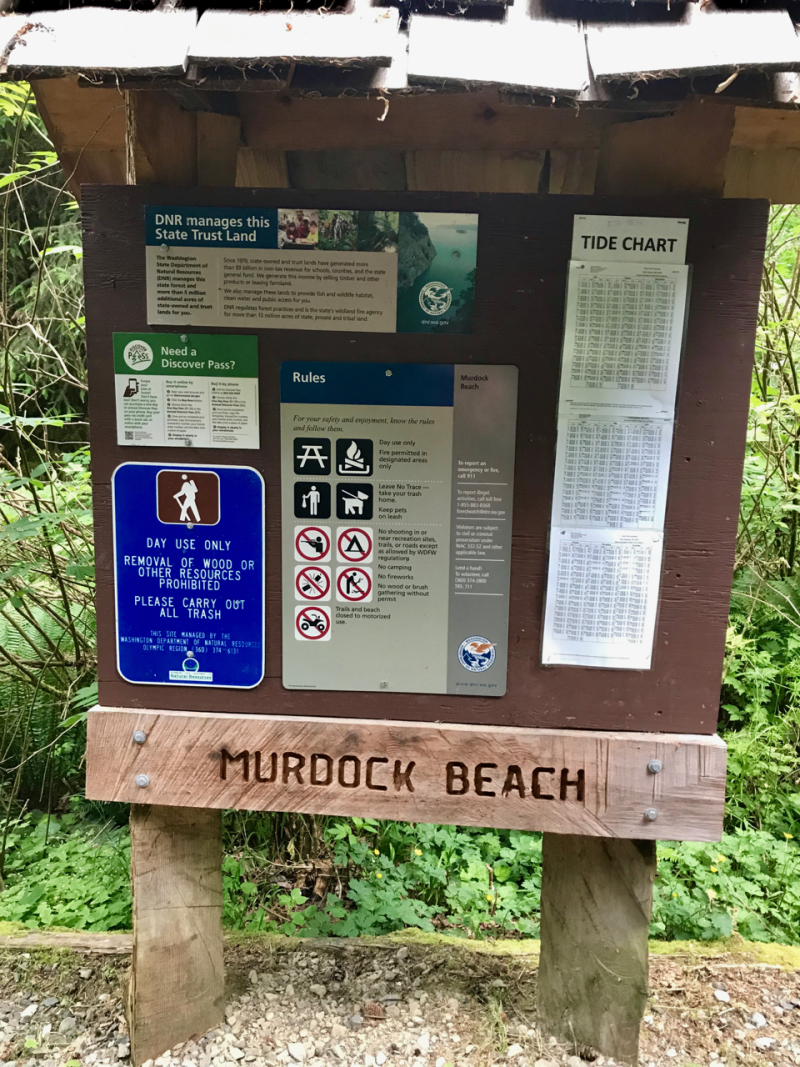 Salt Creek - Murdock - 8