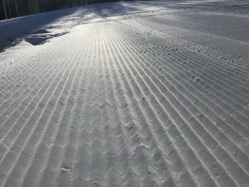 Snowday - 5 (1)