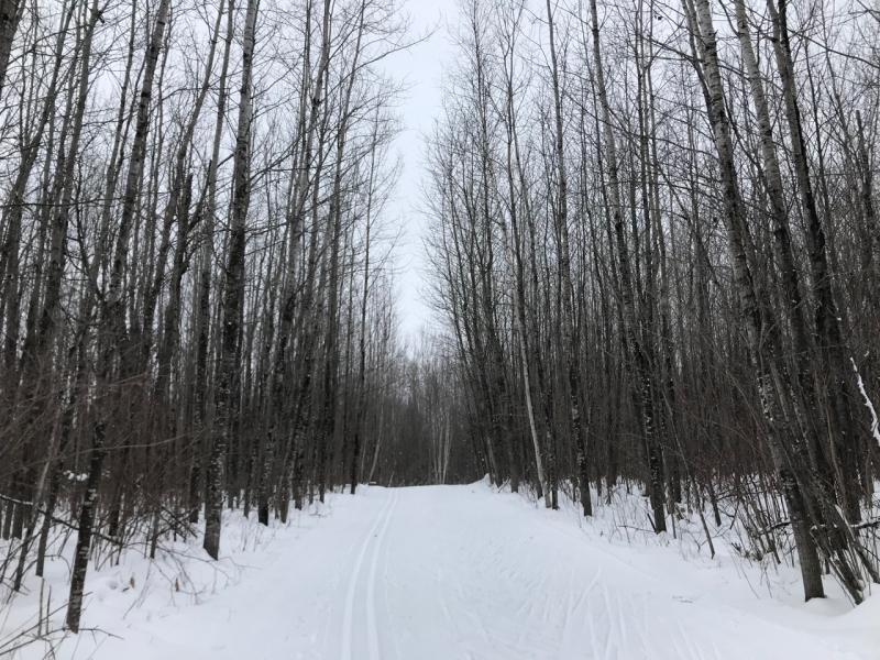 Snowday - 6