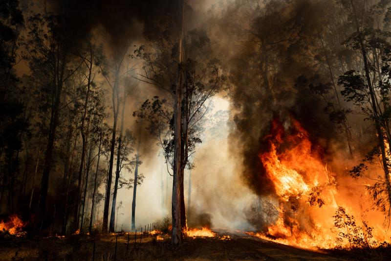 Australia-bush-fires